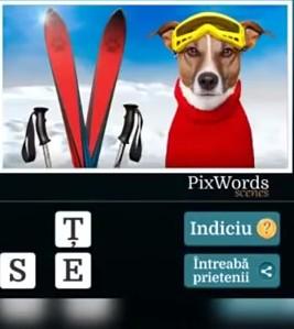 Pixwords Scenes Nivelul 10