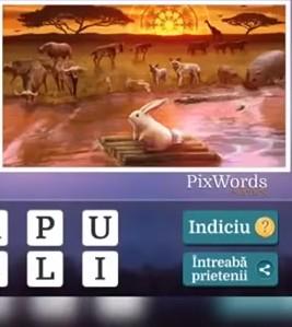 Pixwords Scenes Nivelul 12