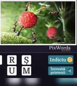 Pixwords Scenes Nivelul 3