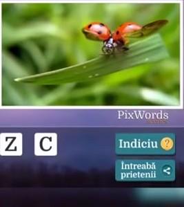 Pixwords Scenes Nivelul 35